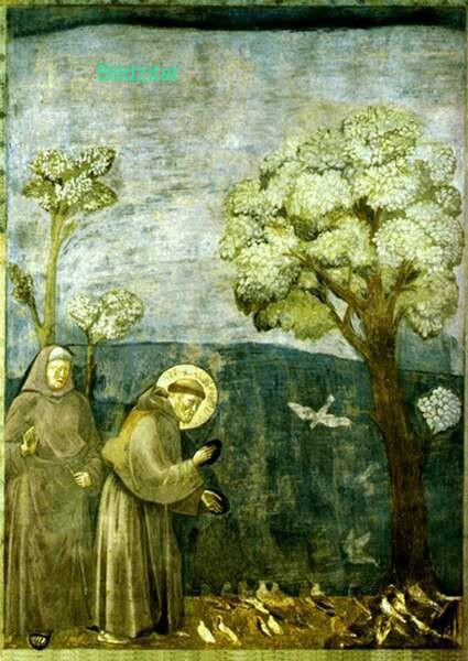 Franz-von-Assisi