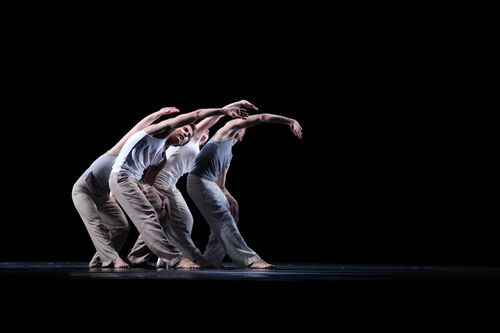 Choreo11-Kritikerpreis_Beitrag_C_alternativ-2