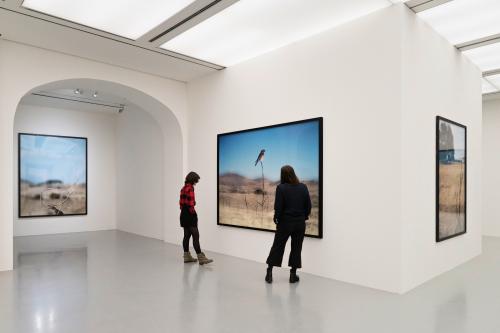 Installationsansichten Jean-Luc Mylayne Herbst im Paradies  Foto Raimund Zakowski (1)