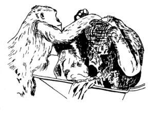 Drarbgorillassack